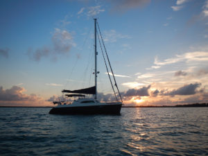 Broadblue 415 Catamaran PAWSITIVITY