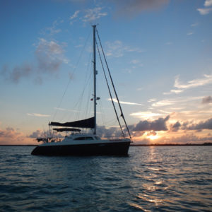 Broadblue 415 Catamaran PAWSITIVITY