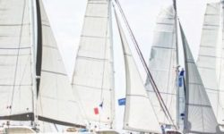 Outremer Week - Performance Catamarans