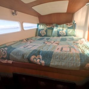 Dolphin 460 Catamaran MORRIGAN cabin