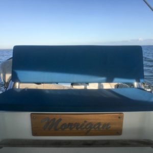 Dolphin 460 Catamaran MORRIGAN seating