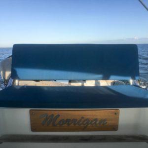 Dolphin 460 Catamaran MORRIGAN seating