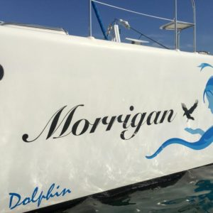 Dolphin 460 Catamaran MORRIGAN boat name