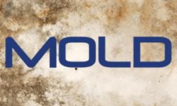 Mold in Catamaran