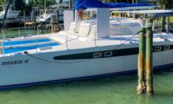 2004 Dolphin 460 Catamaran
